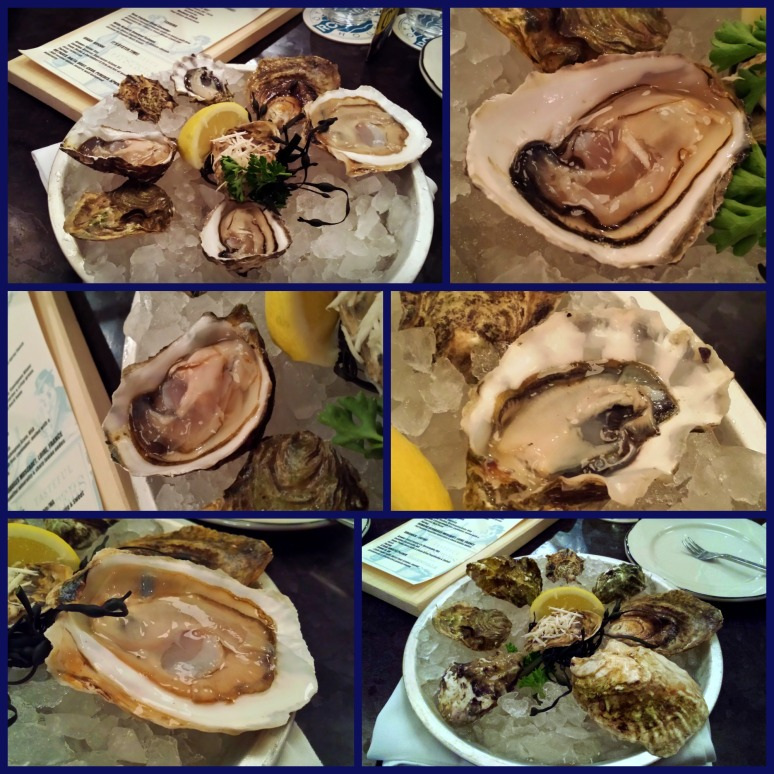 oystercollage